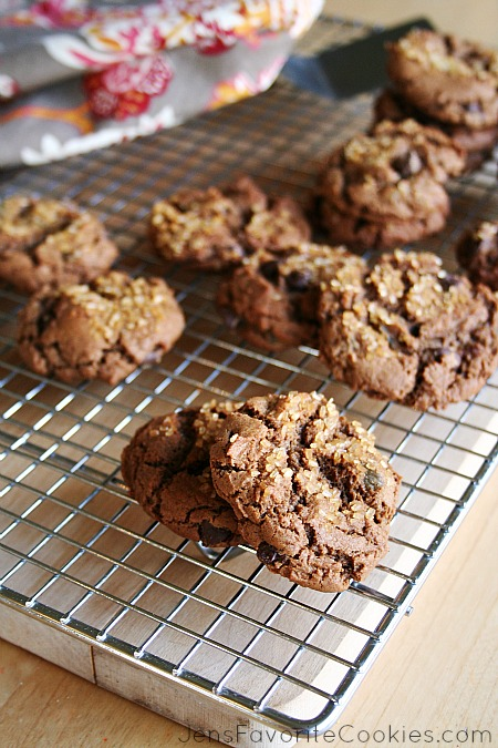 recipe for chocolate gingersnaps