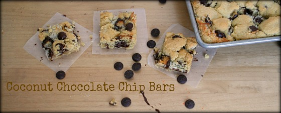 Coconut-Chocolate-Chip-Bars-5