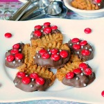 Gluten-Free-Peanut-Butter-Cookies-Recipe