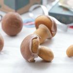 Spiced-Mushroom-Cookies-Pineappleandcoconut-7