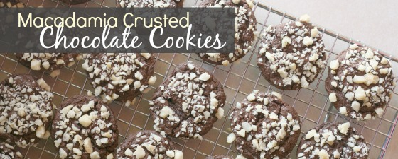 easy-chocolate-cookies