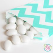 Teal Chevron Goodie Bags