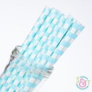 Light Blue Checkered Paper Straws