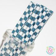 Navy Checkered Paper Straws
