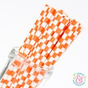 Orange Checkered Paper Straws
