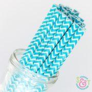 Aqua Chevron Paper Straws