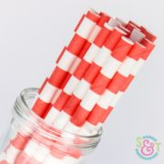 Coral Rugby Stripe Paper Straws