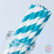 sweetsandtreats-paper-straws-angle-stripe-aqua-wm_1