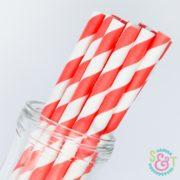Coral Stripe Paper Straws