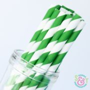 Green Stripe Paper Straws