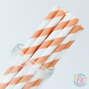 Light Orange Stripe Paper Straws