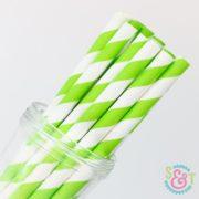 Lime Stripe Paper Straws