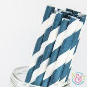 Navy Stripe Paper Straws