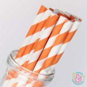 Orange Stripe Paper Straws