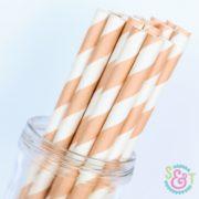 Peach Stripe Paper Straws