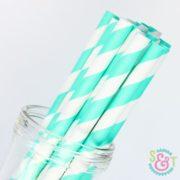 Aqua Stripe Paper Straws
