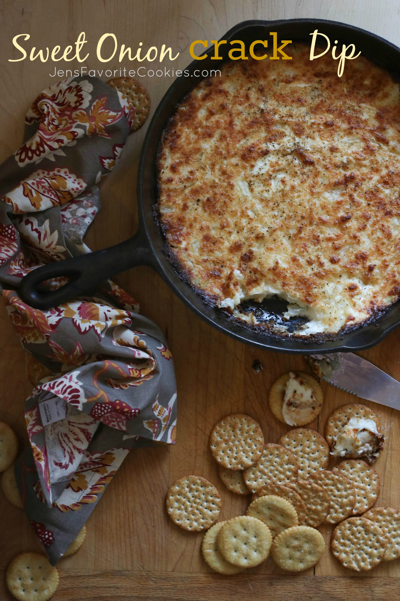Sweet Onion Crack Dip from Jen's Favorite Cookies